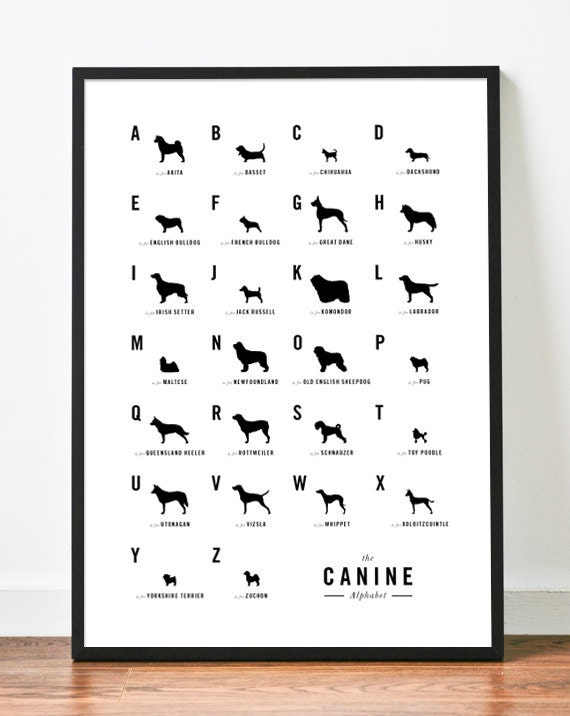 Dog Alphabet Nursery poster art print illustration typography