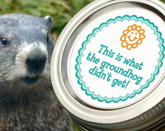 Groundhog canning jar label, funny round mason jar stickers for gardeners, cute 2 inch canning labels, regular or wide mouth available