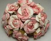 Pink Cream Flower Vintage Buds