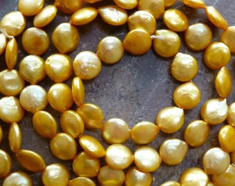 Yellow Coin Pearls - 8mm - High Luster - Thick Nacre - High Quality - Qty 5 pcs