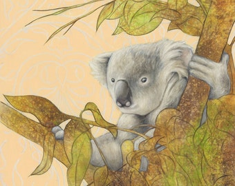 Koala Bear Art Print  - Koala Three matted print 11 x 14