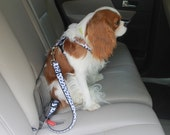 Car Safety Buckle for Pets (Doggie Seat Belt)