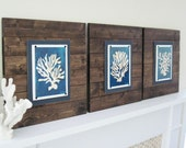 Set of 3 Dark Wood Plank Frames with Graphic Art Coral Sillhouettes for 8x10
