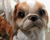 vintage shafford blue ribbon pekingese doggie