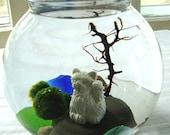 SALE Marimo Balls and Maneki Neko Lucky Cat Tiny Terrarium