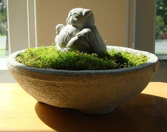 Mini Lucky PUG Buddha Sculpture in Mini Moss Terrarium
