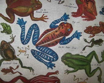 FROGS  screenprint designer fabric