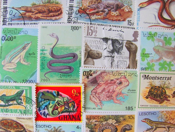 Witchsbrew 50 Vintage Modern Premium Mix Reptiles Amphibians Postage Stamps Herpetology Frog Snake Natural History Biology Science