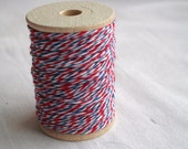 Bakers Twine AIRMAIL 25 Yards