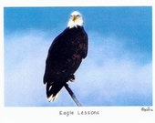 Eagle Lessons Photo Story Card