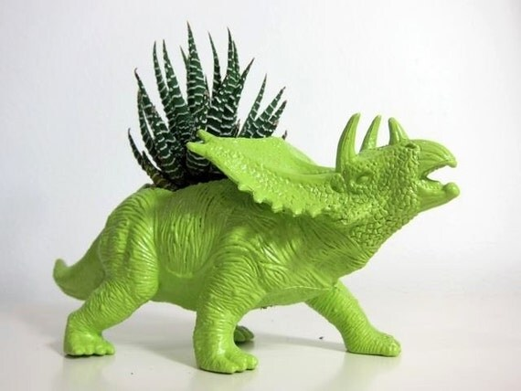 Fred the Triceratops Planter & Succulent