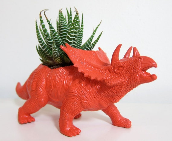 Party Package - 12 Different Dinosaurs and Succulents - Free Shipping
