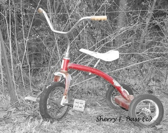 RED TRICYCLE PHOTOGRAPH, Toy, b&w, color photo various sizes available