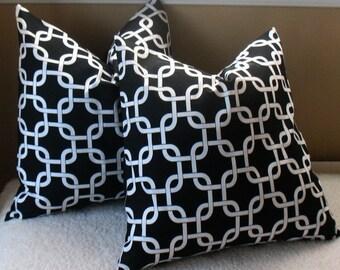 New SALE TWO 18 x 18   Pillow Covers Premier  Black Gotcha