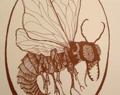 Fly Cameo - Handpulled Limited Screenprint - Bronze on Cream