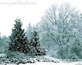 First Snow on Christmas    8x10