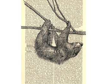 Small Sloth Art Print on Antique 1896 Dictionary Book Page
