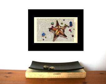 Starfish and Friends Art Print on Antique 1896 Dictionary Book Page