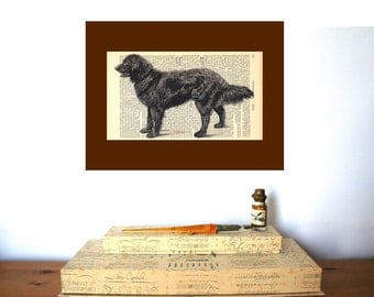 Dog Man s Best Friend Vintage Art Print on Antique 1896 Dictionary Book Page
