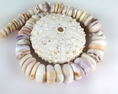 Hawaiian Puka Shell necklace genuine large puka shells Maui