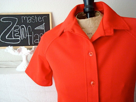 70's Polyester Shirt by Cricket Lane * On Sale!