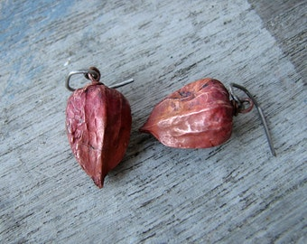 Chinese lantern earrings titanium dangle