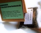 ULTIMATE KOMBUCHICK Quick- Brew Starter Kit for Kombucha- Lemongrass