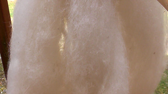 Roving Baby Alpaca (8 Oz.) for Spinning Natural White Undyed  (More Available)