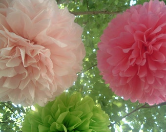 10 Tissue paper pom poms / Wedding decorations / Baby shower / Wedding anniversary / Bridal party / Party decorations
