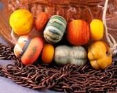 Lampwork Glass Autumn Pumpkins Gourds Set (9)  by SRA glass artist Payton Jett