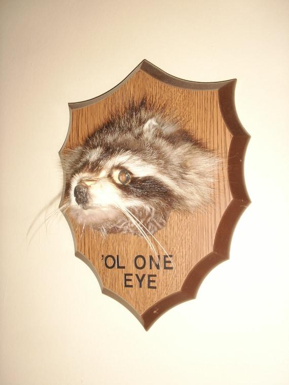 Raccoon head mount made from repurposed fur scraps