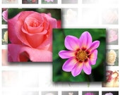 Colorful Flowers - 1 inch Digital Collage Sheet Printable Images square glass resin Pendants scrabble tiles magnets (015) BUY 3 GET 1 FREE
