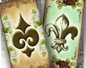 Digital collage Fleur de lis domino pendant 1x2 inch rectangle necklaces jewelry making paper supplies download file (120) BUY 3 GET 1 FREE