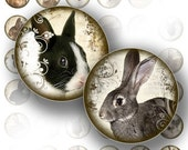 Graphics download 1 inch circles bottle caps digital collage sheet art jewelry making paper supplies bunny rabbit (089) BUY 3 GET 1 FREE