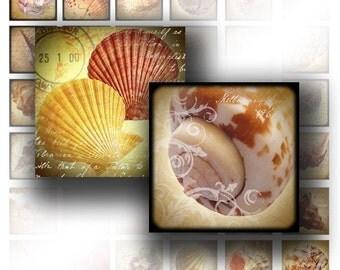 Vintage sea shell digital collage scrabble tile 1x1 in square necklace jewelry making paper supplies download file (038) BUY 3 GET 1 FREE