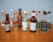 Vintage liquor bottles mini 60s 70s instant collection