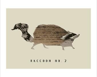 Racoon no. 2