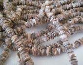 "2 Strands of Natural Shell Chips 15"" Strands"