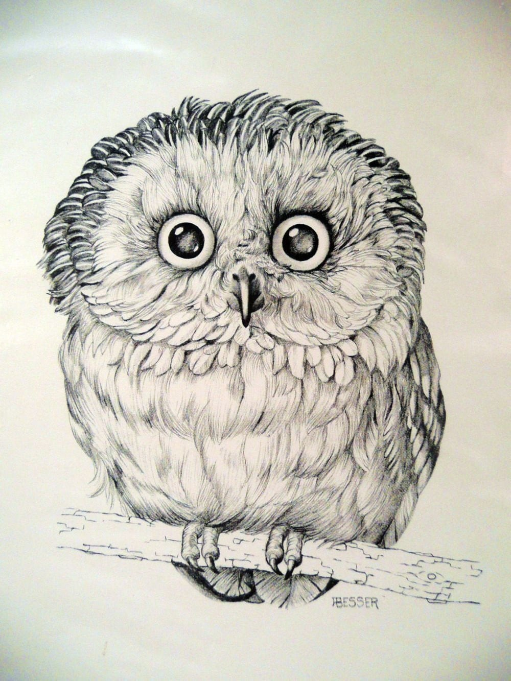 Declarative image within printable owl