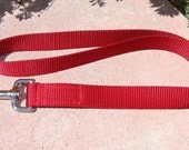 "Dog Leash 1"" Plain lead in 4', 5' or 6' lengths - 20 Webbing Colors - choose snap size"