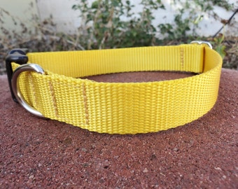 """Dog Collar Naked 1"""" wide Quick Release buckle or Martingale collar adjustable - 22 webbing colors"""