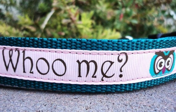 "Sale Dog Collar Whoo Me 1"" wide adjustable side release buckle -  martingale style is cost upgrade"
