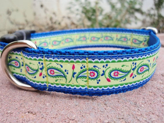 "Sale Dog Collar Paisley Lime 1"" wide Quick Release buckle adjustable / no martingale"