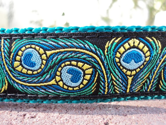 "Dog Collar 1"" wide Side Release buckle or Martingale Collar Peacock Art - see 3/4"" & 1.5"" listings"