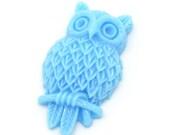 2 Fancy Owl Cabochons Robin Egg Blue 31mmX18mm Pendants Rings