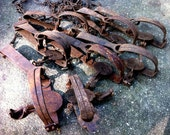 RESERVED FOR Don Cromwell - 7 Rustic Steel Animal Traps