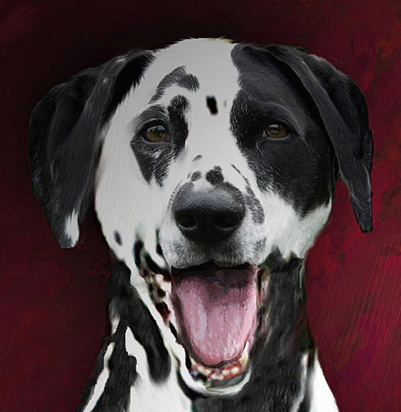 Pet Portraits of your very best dog 10 x 12 dalmatian stretched canvas