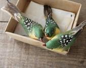 RESERVED  vintage box of birds
