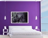 Purple trees photograph Gothic Sky 8x12 Metallic Fine Art Photo Print