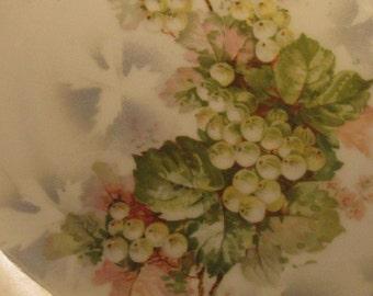 Vintage Plate White Grape   Cottage Decor  SALE Country Wedding